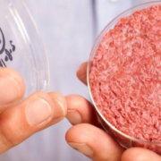 Κρέας Εργαστηρίου: Στηρίζουμε την ιδέα ή όχι;