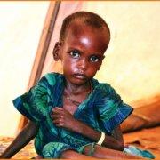 Πώς η κατανάλωση ζωικών τροφών συμβάλλει στο πρόβλημα της παγκόσμιας πείνας
